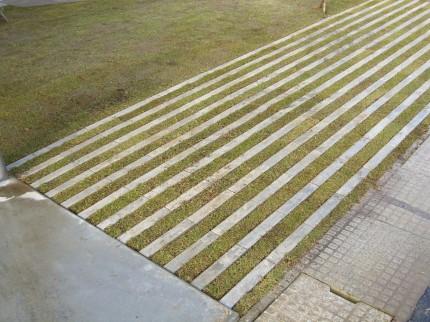緑化カースペース施工後