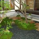 敷石と苔のコントラスト
