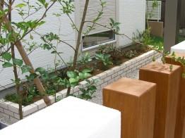 地窓から見る花壇