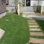 芝生とステップ