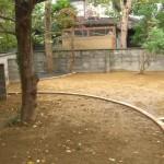 剪定と伐採2
