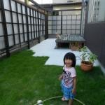 子供と芝生