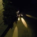 玄関 足元灯