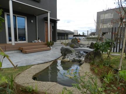 庭にある池