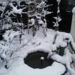 雪景色(T_T)