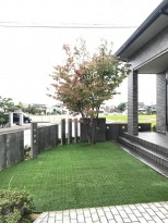 雑草対策 人工芝