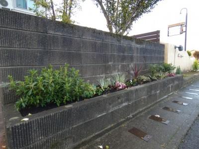 境界 花壇 植え込み アフター