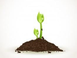 土の再利用
